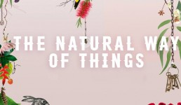 The Natural Way Of Things Heading To The Screen