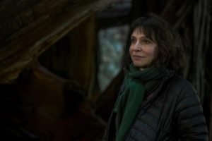 Susanne Bier: Out of the Box