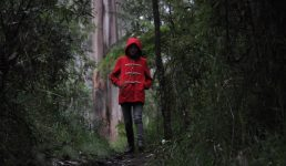 Australian Chiller Lost Gully Road to Screen at Revelation Film Festival